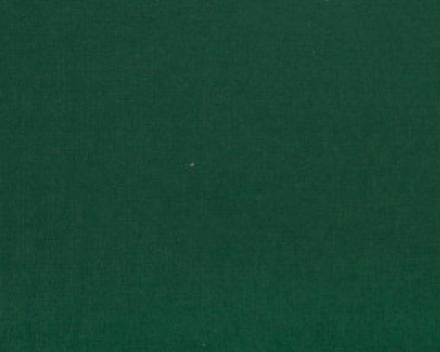 Windscherm Avalo in Dralon uni kleur Groen